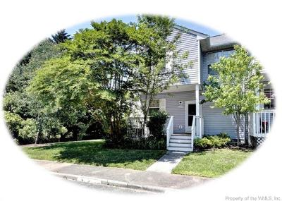 Williamsburg Single Family Home For Sale: 5340 Aden Court