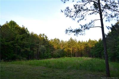 Residential Lots & Land For Sale: Homestead Road