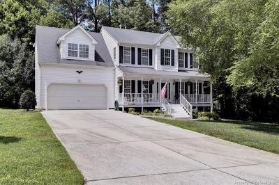 Williamsburg Single Family Home For Sale: 3908 Blue Ridge Court