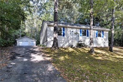 Williamsburg Single Family Home For Sale: 6225 Adams Hunt Drive