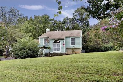 Williamsburg Single Family Home For Sale: 109 Nice Drive