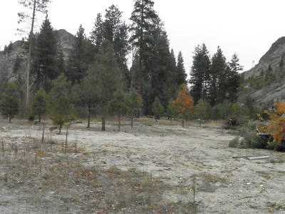 Entiat Residential Lots & Land For Sale: Parcel E Entiat River Rd Rd