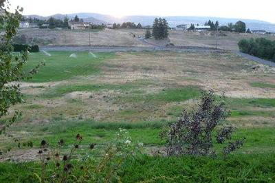 Wenatchee Residential Lots & Land For Sale: Nna Majestic View Dr
