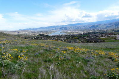 Wenatchee Residential Lots & Land For Sale: 126 E Mountain Brook Ln