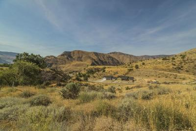 Entiat Residential Lots & Land For Sale: 9954 Griffith Pl