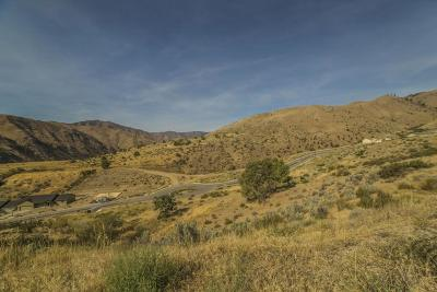 Entiat Residential Lots & Land For Sale: 9956 Griffith Pl