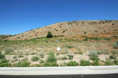 Residential Lots & Land For Sale: 1107 Sunny Brooke Ln