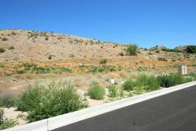 Chelan Residential Lots & Land For Sale: 1119 Sunny Brooke Ln