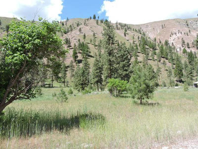 Chelan Residential Lots & Land For Sale: 5570 Navarre Coulee (Lot C) Rd