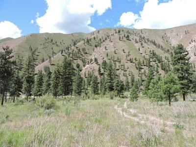 Chelan Residential Lots & Land For Sale: 5625 Navarre Coulee (Lot N) Rd