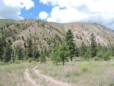 Chelan Residential Lots & Land For Sale: 5675 Navarre Coulee (Lot O) Rd