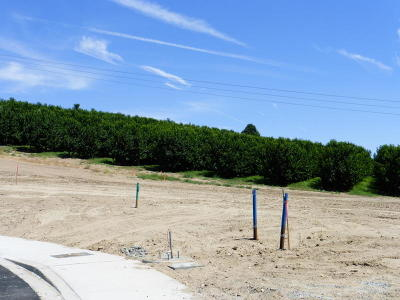 East Wenatchee Residential Lots & Land For Sale: 828 Madeleine Ct.