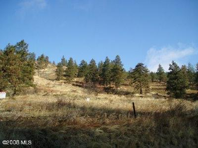 Cashmere Residential Lots & Land For Sale: 4745 Brisky Canyon Road