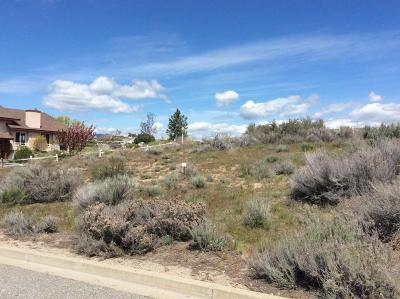Residential Lots & Land For Sale: 304 Desert View Pl