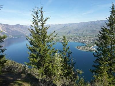 Chelan Residential Lots & Land For Sale: Nna Bear Mountain Rd