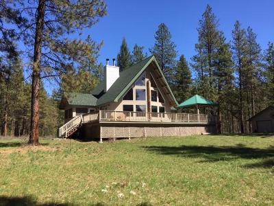 Leavenworth Single Family Home For Sale: 12310 Primitive Park Rd