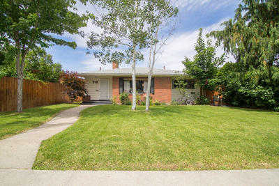 Wenatchee, Malaga Single Family Home For Sale: 910 Plum St