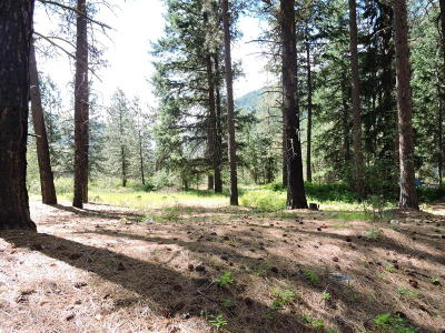 Entiat Residential Lots & Land For Sale: Nna Tyee Drive