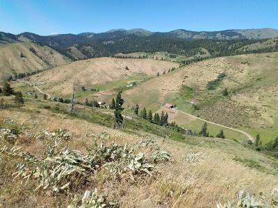 Cashmere Residential Lots & Land For Sale: Nna E. Fork Olalla Canyon Rd