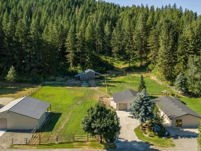 Leavenworth Single Family Home Active - Contingent: 11467 Eagle Creek Rd