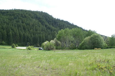 Leavenworth Residential Lots & Land For Sale: Nna Chumstick Highway