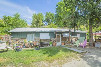 Entiat Single Family Home For Sale: 3222 Entiat River Road