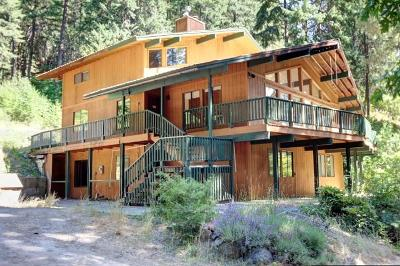 Leavenworth Single Family Home For Sale: 16925 Chumstick Hwy