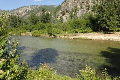Entiat Residential Lots & Land For Sale: 15270 Coyote Falls Rd