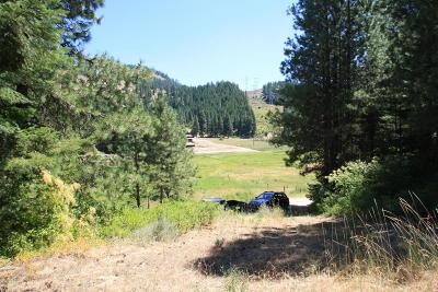 Leavenworth Residential Lots & Land For Sale: Nna Stargazer Ln