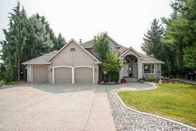 East Wenatchee Single Family Home For Sale: 2452 Grand Ave