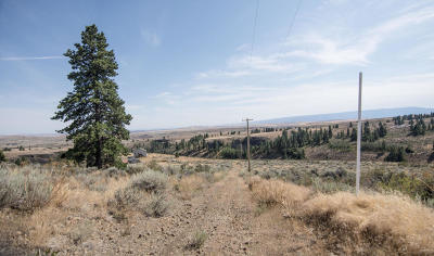 East Wenatchee Residential Lots & Land For Sale: 207 Wild Turkey