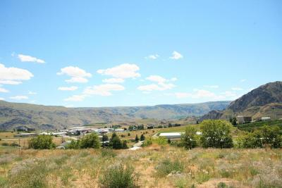 Chelan Residential Lots & Land For Sale: 1110 Sunset Ln