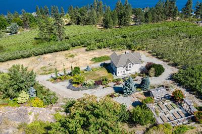 Chelan Single Family Home For Sale: 15155 S Lakeshore Rd