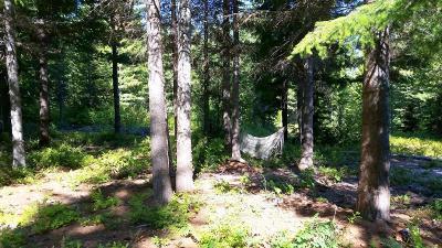 Leavenworth Residential Lots & Land For Sale: Nna Meadow Creek Road