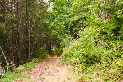 Leavenworth Residential Lots & Land For Sale: Nna Lake Wenatchee Hwy