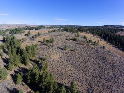 East Wenatchee Residential Lots & Land For Sale: 401 Wild Turkey Rd