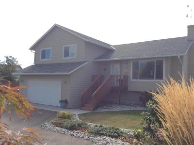 East Wenatchee, Rock Island, Orondo Single Family Home For Sale: 2481 Hamilton Ct
