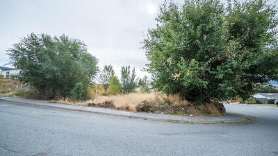 East Wenatchee Residential Lots & Land For Sale: 875 Garden Plaza