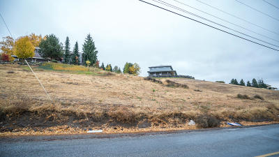 Wenatchee Residential Lots & Land For Sale: 3755 Knowles Rd