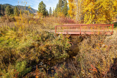 Leavenworth Residential Lots & Land For Sale: 11393 Chumstick Hwy