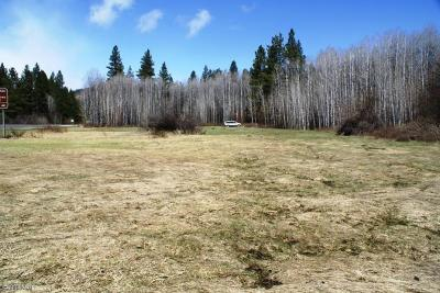 Leavenworth Residential Lots & Land For Sale: Nna Us Hwy. 2