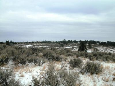 East Wenatchee Residential Lots & Land For Sale: 303 Sagebrush Hill Rd