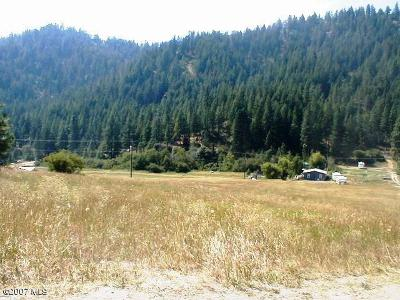 Residential Lots & Land For Sale: 17740 Chumstick Hwy