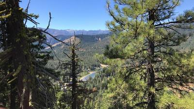 Residential Lots & Land For Sale: Nna Chumstick Hwy