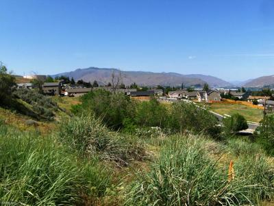 Wenatchee Residential Lots & Land For Sale: 1900 Cumbo Court