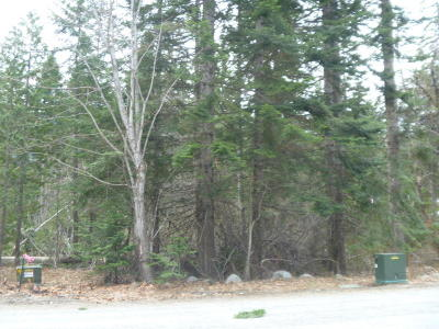 Leavenworth Residential Lots & Land For Sale: 16811 Brown Rd