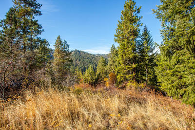 Leavenworth Residential Lots & Land For Sale: Nna Chumstick Rd