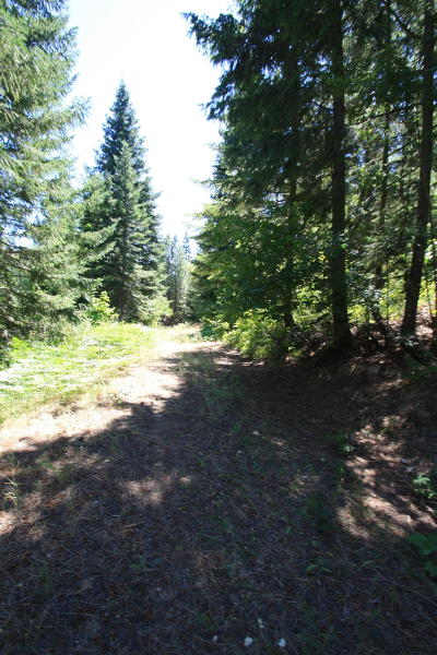 Residential Lots & Land For Sale: Nna Stargazer Ln