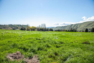 Wenatchee Residential Lots & Land For Sale: Lot 3 Diede Hills Ln