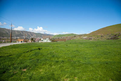 Wenatchee Residential Lots & Land For Sale: Lot 4 Diede Hills Ln.